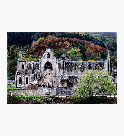 Autumn At Tintern Abbey  Photographic Print