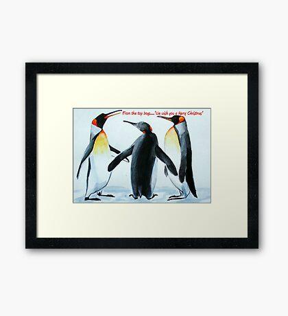 Singing Penguins Framed Print