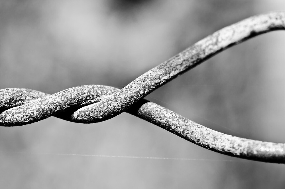 Twisted Wire by brian hammonds