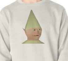 Dank Meme Elf Pullover