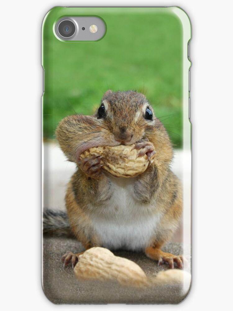Chippy - iPhone Case by Lori Deiter