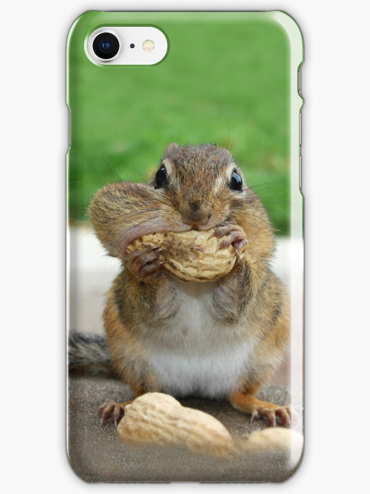 Chippy - iPhone Case by Lori Deiter
