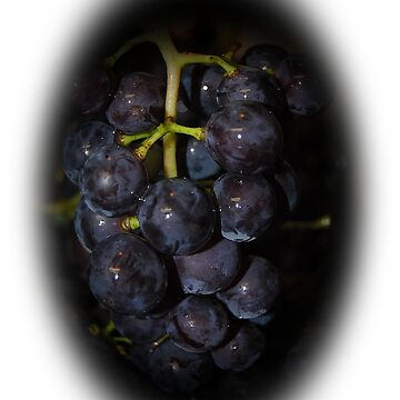 Grapes by Jonice