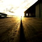 bright awakeness by mark thompson