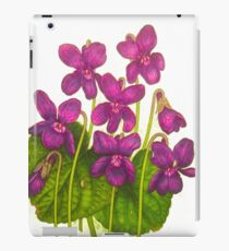 violets iPad Case/Skin