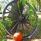 Essence of Fall by Jeri Garner