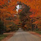 Fall... In Love by Jeri Garner