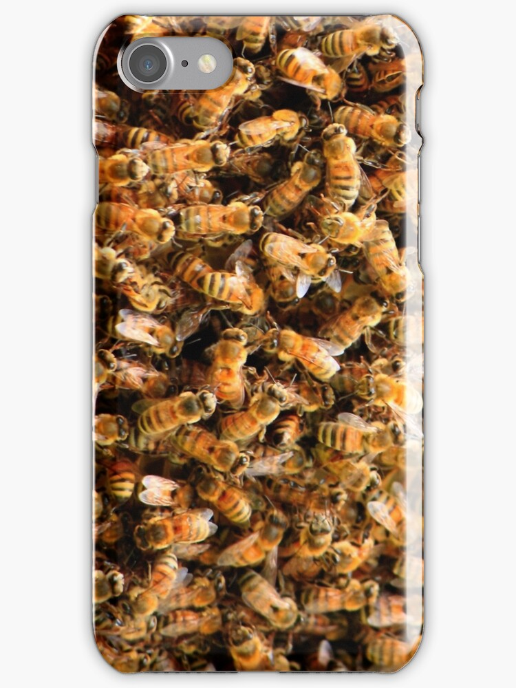 Honey bees by D R Moore