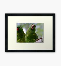 Ha Ha, You Crack Me Up! Framed Print