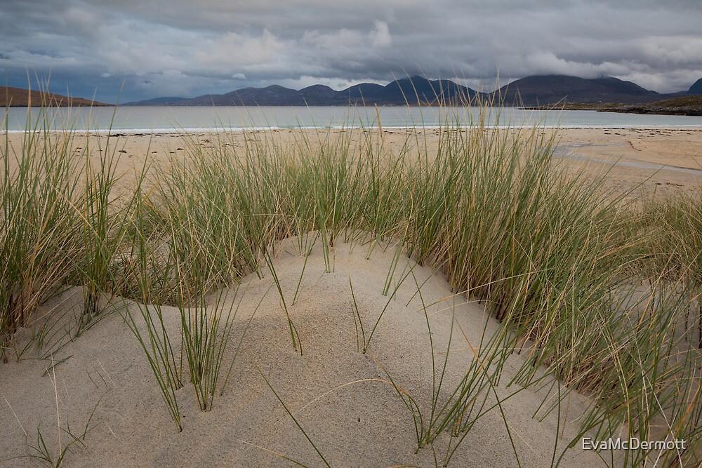 Grass Mountain Ocean by EvaMcDermott