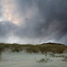 Wind Swept by EvaMcDermott
