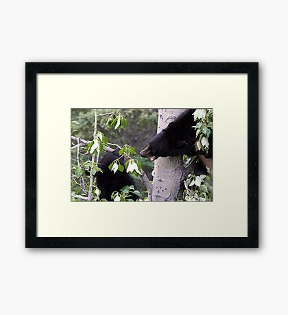 My Tree !!! Framed Print