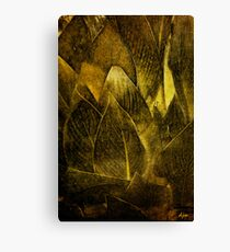 Canna In Gold Canvas Print