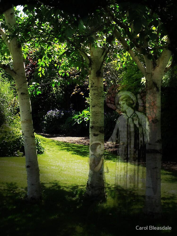 Garden of Peace by Carol Bleasdale
