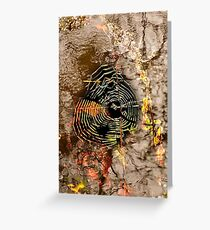 Web Abstract .. Greeting Card