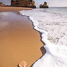 Where Portugal Begins - Algarve coast by Luka Skracic