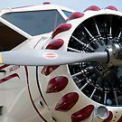 Stinson SR-8C Reliant by palmerphoto