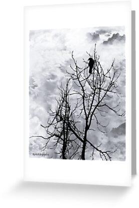 Solitary Sentinel by Rhonda Strickland
