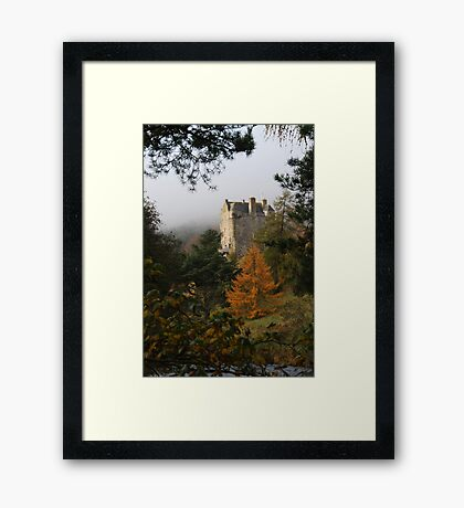 misty neidpath Framed Print