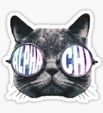 Alpha Chi Cat Galaxy Sticker
