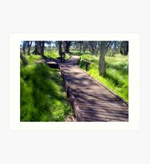 Boardwalk to a natural phenomenon Art Print