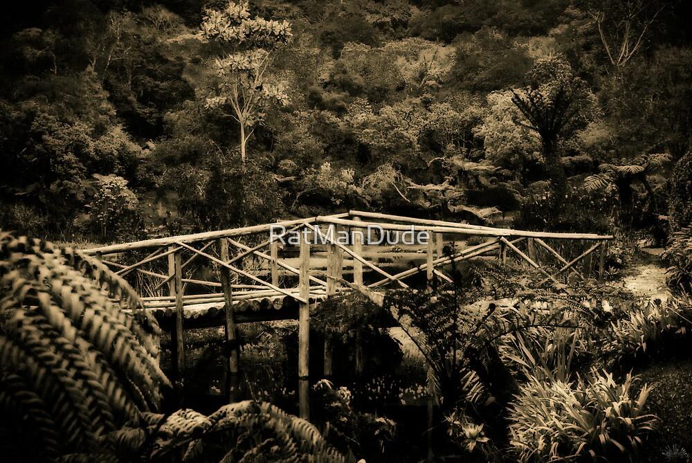 Wooden Bridge by RatManDude