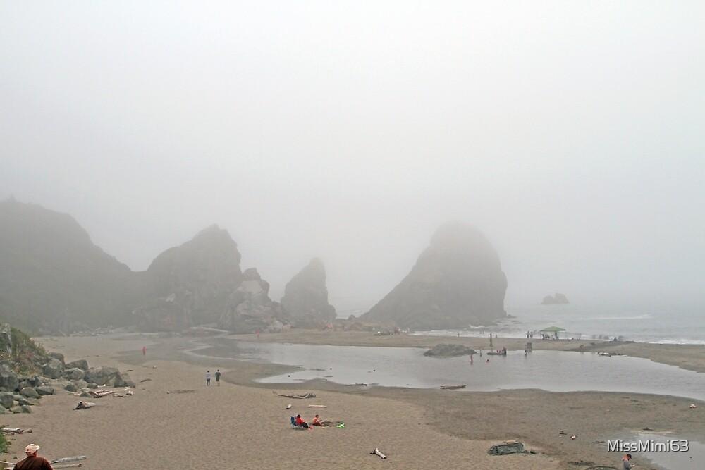 A Foggy time at the Beach by MissMimi63
