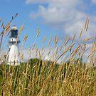 A Maine Lighthouse by mattnnat