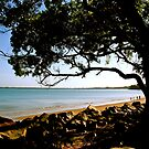 Morning at Mindil Beach, Darwin by Lynette Higgs