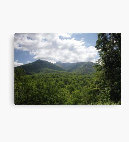 Mount LeConte Canvas Print