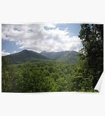 Mount LeConte Poster
