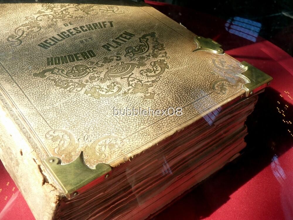 Antique Dutch Bible - Heilige Schrift by bubblehex08