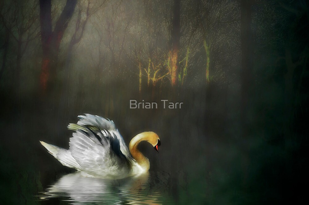 All By Myself by Brian Tarr