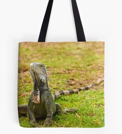 Iguana on Saint Marten Island Tote Bag