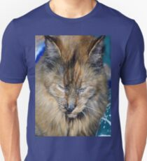 Tortes Shell Cat Has Mark Of The Paw Unisex T-Shirt
