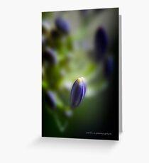 Simplicity © Vicki Ferrari Greeting Card
