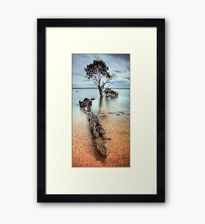 Covered Framed Print