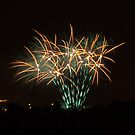 Fire work in the night sky by yampy