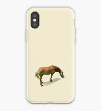 Horse from Kristberg (T-Shirt & iPhone case) iPhone Case