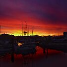 Red Sky @ Morn' by Gail Bridger