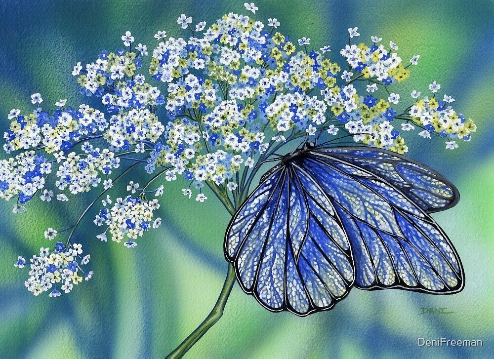 Wings of Lace by DeniFreeman