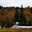Fall Farm von William Carney
