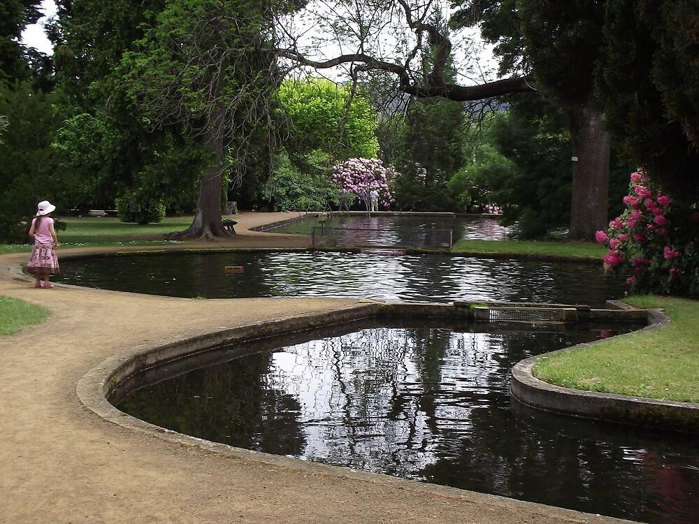serenity at the PLENTY Salmon Ponds by gaylene