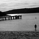 Evening swim, Quarantine Station, Manly, NSW by Collymack