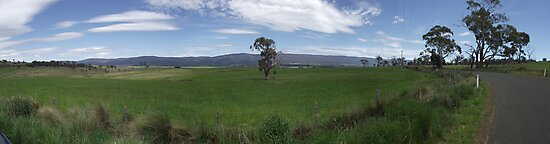 pano of country road heading towards Great Western Tiers by gaylene