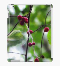 Berry iPad Case/Skin