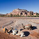 Aït Benhaddou Kasbah with Camels by Kerry Dunstone
