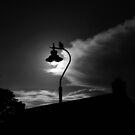 One November Night by ragman