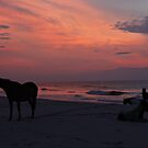 Assateague Sunrise by KerrieLynnPhoto