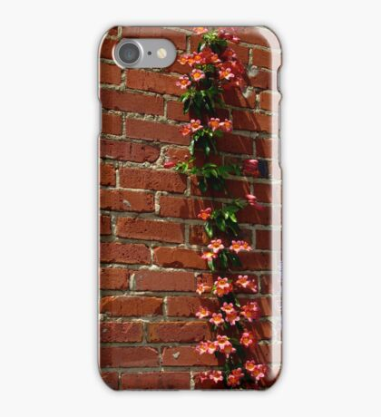 Climbing iPhone Case/Skin